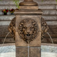 18574 Fountain Lion Tight 2